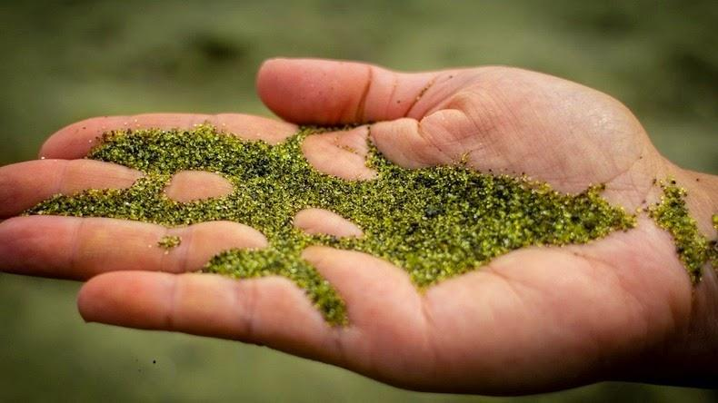 ペリドットの砂